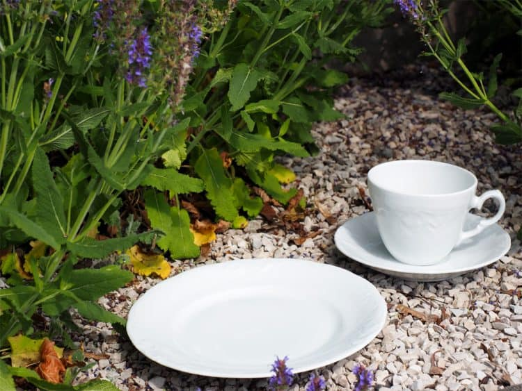 3 teiliges Gedeck Friederike mit Kaffeetasse ohne Füßchen