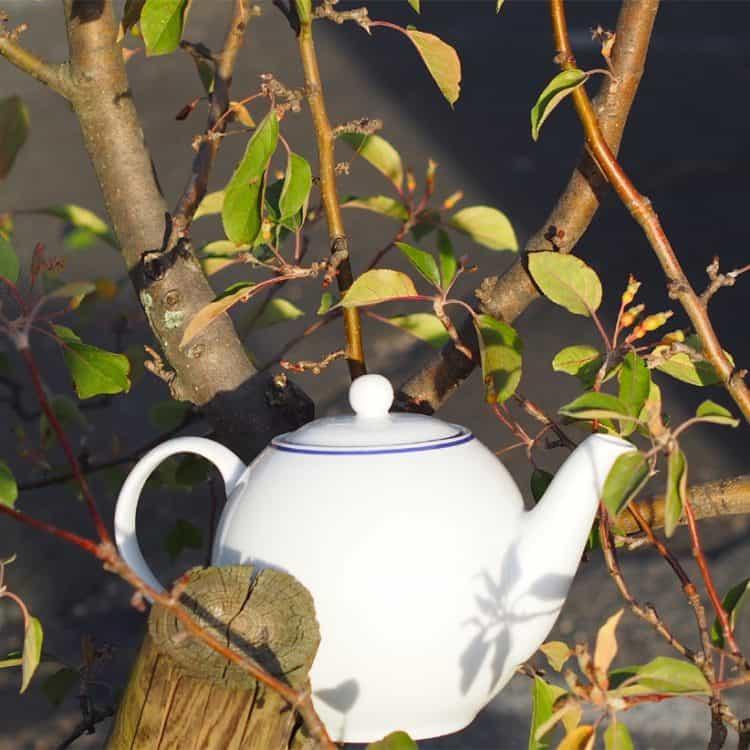 Blaurand Teekanne Porzellan 1,2 l