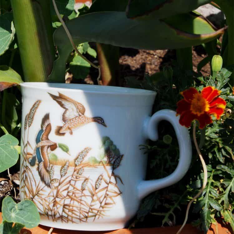 Frühstücksporzellan Becher Sina groß mit Wildenten