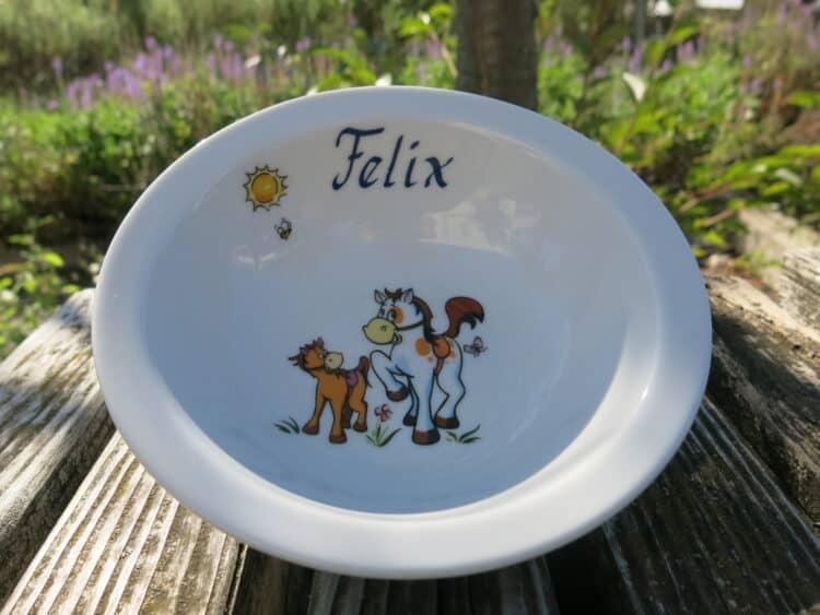 Müslischüssel 16 cm aus Porzellan mit Pferd und Puny plus Name