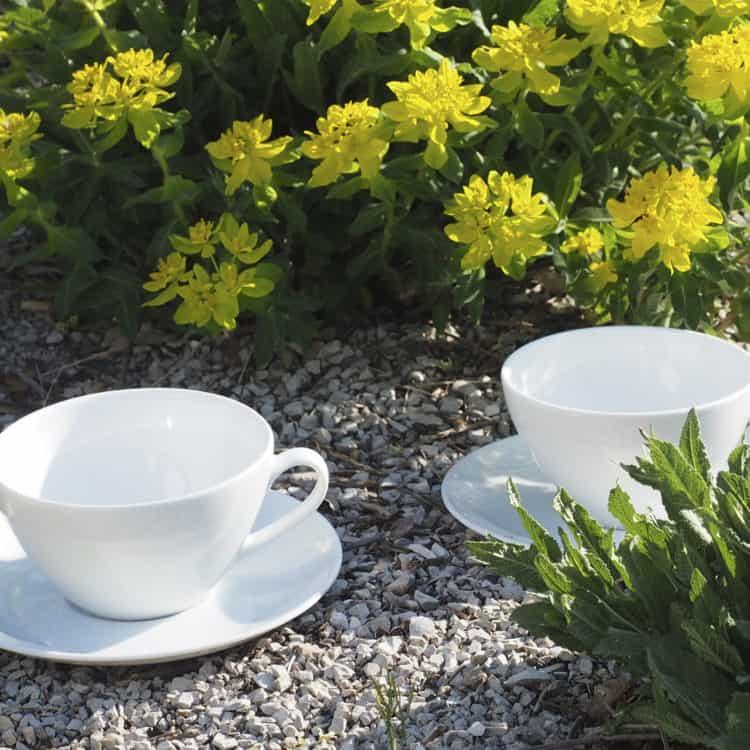Elegante Teetassen aus der Porzellanserie Carlo in zwei Größen