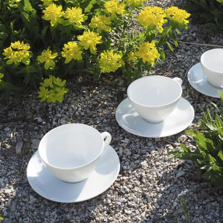 Tassen aus weißem Porzellan