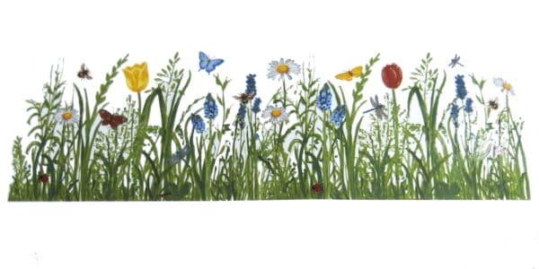 Motiv Wiesenband Frühlingswiese