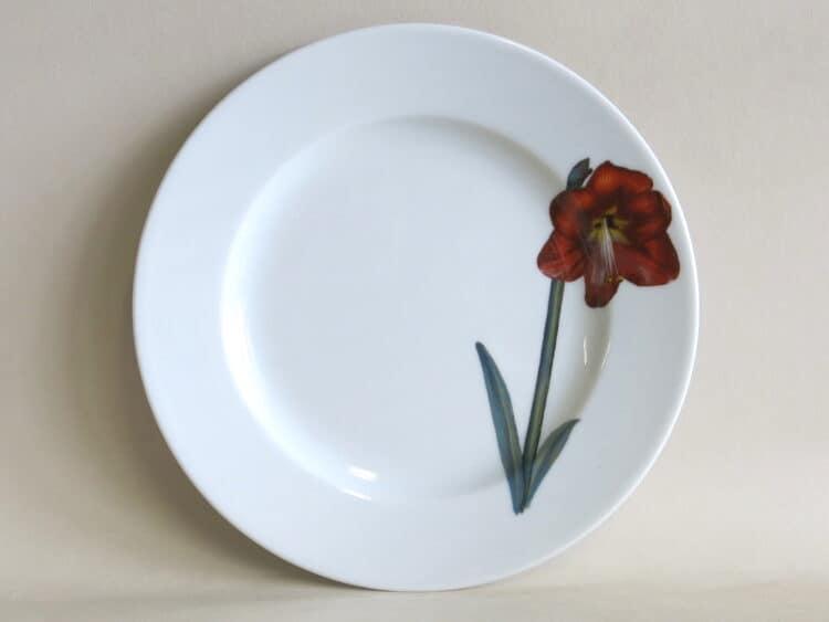 Teller Opty 21 cm mit Gartenblume Amaryllis