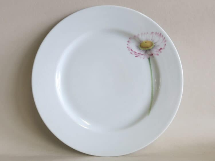 Teller Opty 21 cm mit Gartenblume Gänseblümchen