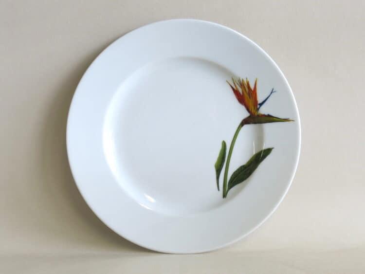 Teller Opty 21 cm mit Gartenblume Strelizie aus Porzellan