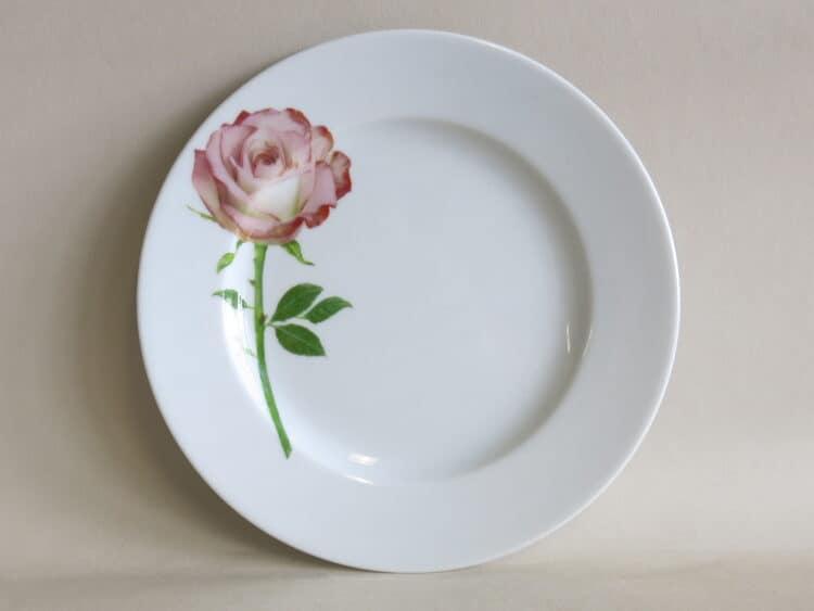 Teller Opty 21 cm mit Gartenblume Teerose
