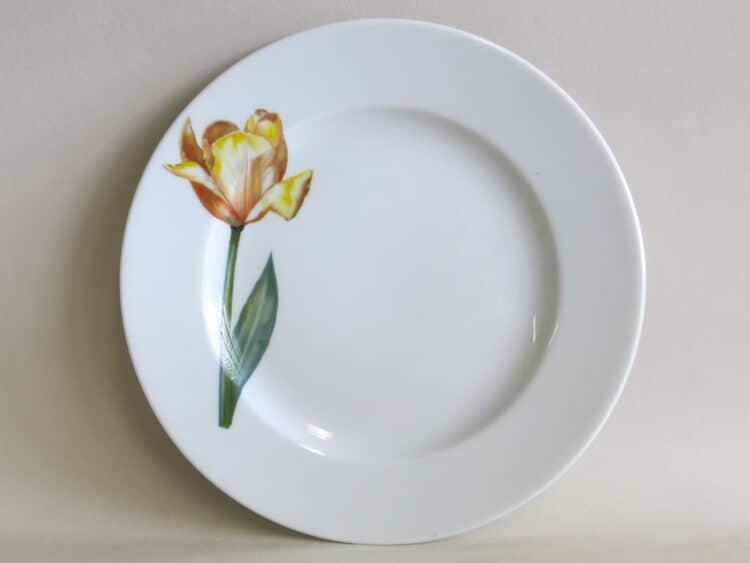 Teller Opty 21 cm mit Gartenblume gelbe Tulpe