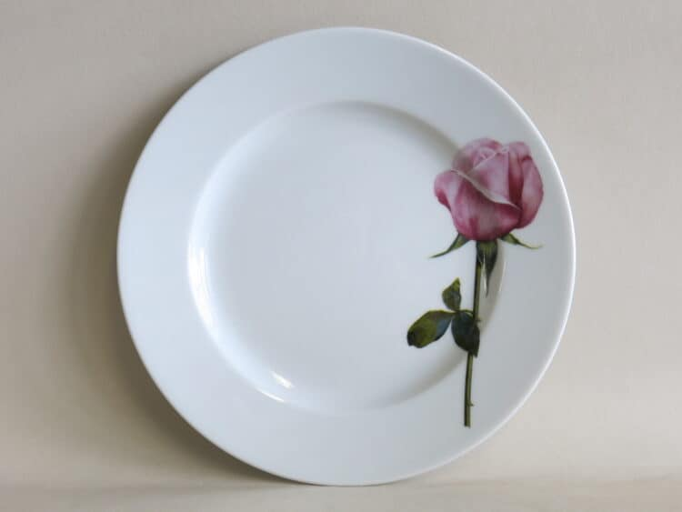 Teller Opty 21 cm mit Gartenblume rosa Rose