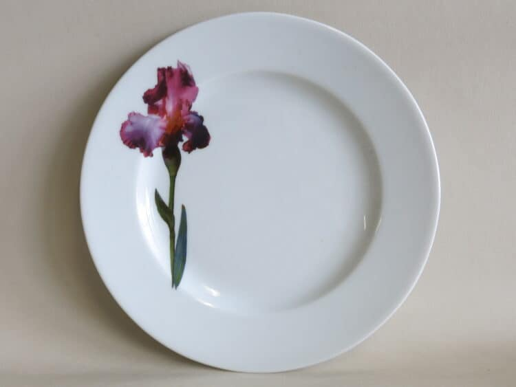 Teller Opty 21 cm mit Gartenblumen violetter Iris