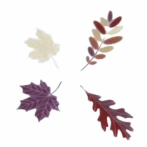 Motive Herbstherz klein