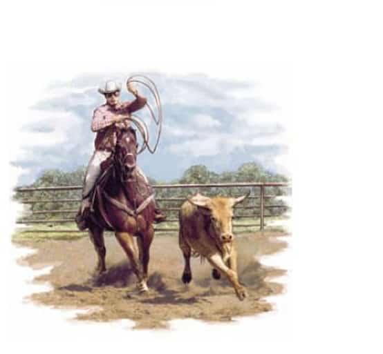 Porzellandekor Rodeo mit Cowboy