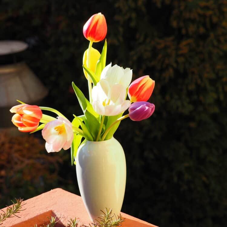 Sonderangebote Vasen