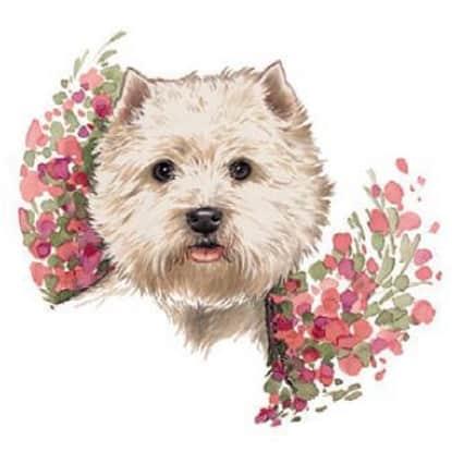 Motiv Hundeportrait West Highland Terrier auf Porzellan